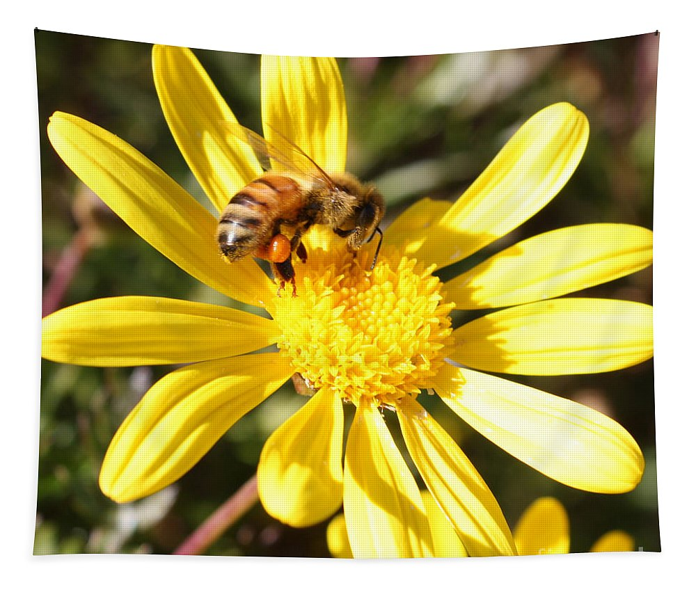 Bee Tapestry featuring the photograph Pollen-laden Bee On Yellow Daisy by Carol Groenen