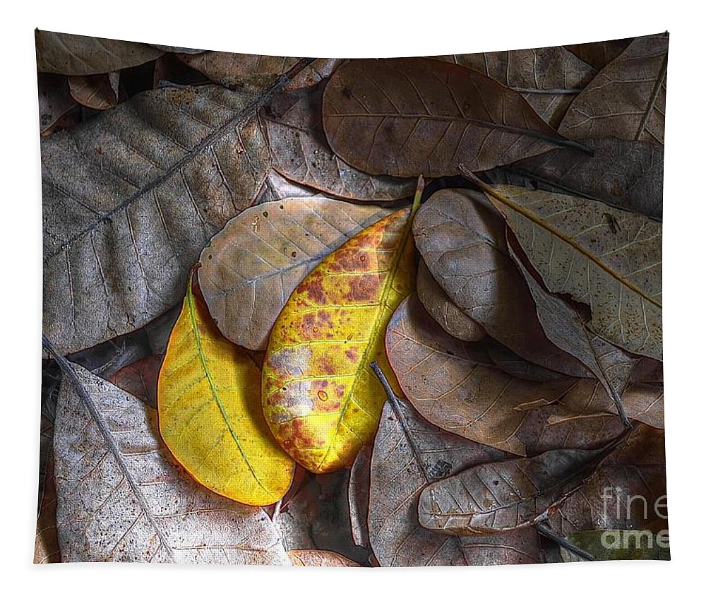 Michelle Meenawong Tapestry featuring the photograph Pot-pourri by Michelle Meenawong