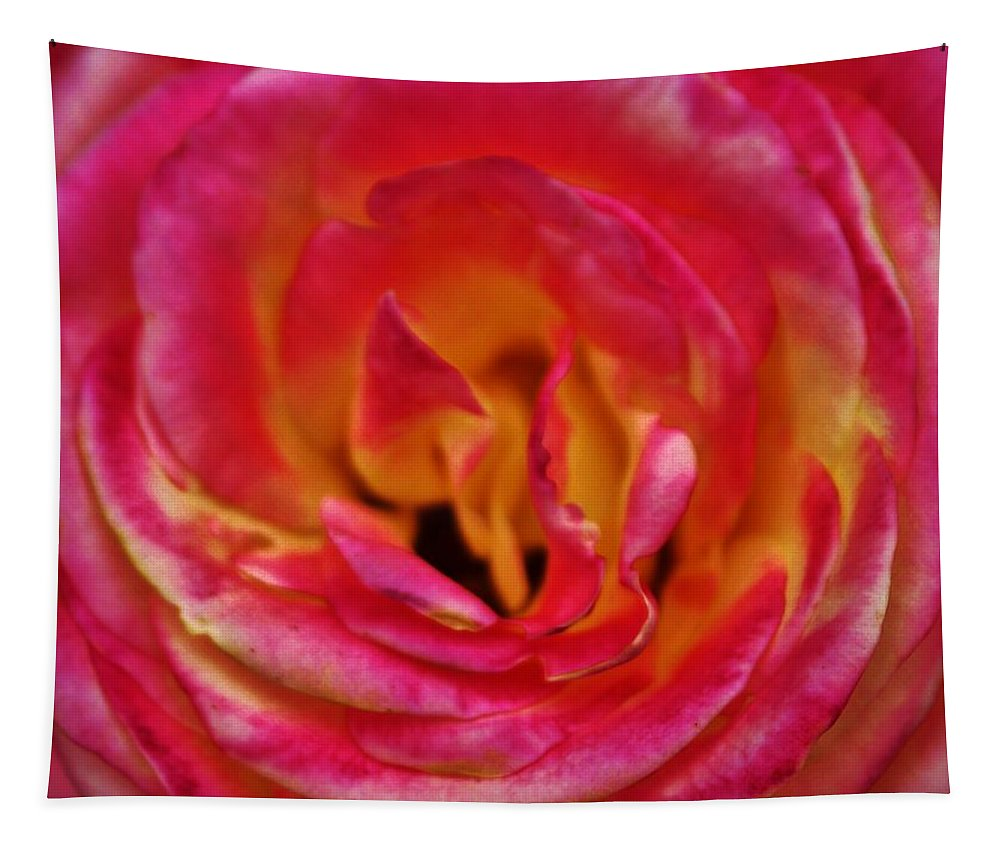 Rose Tapestry featuring the photograph Precious Rose by Cynthia Guinn