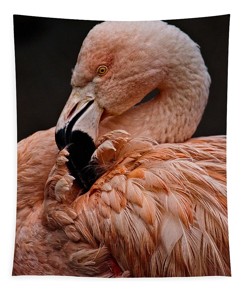 Preening Tapestry featuring the photograph Preening by Wes and Dotty Weber