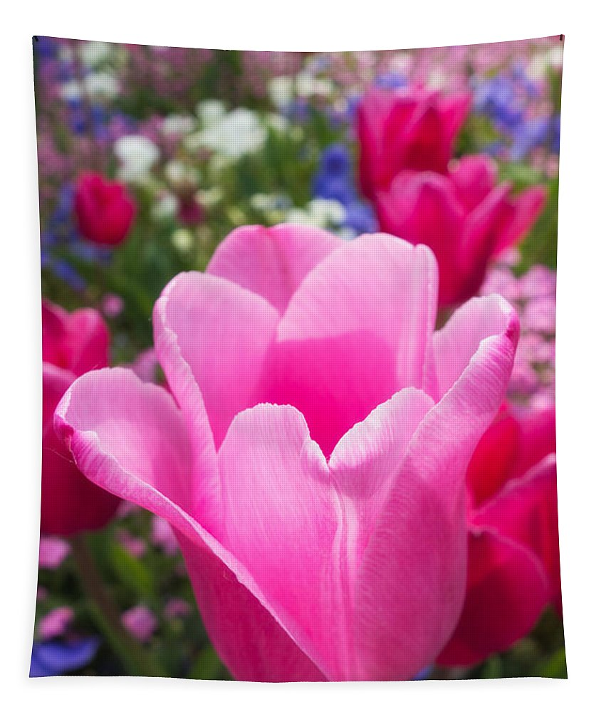 Tulip Tapestry featuring the photograph Pretty Pink Tulip And Field With Flowers And Tulips by Matthias Hauser