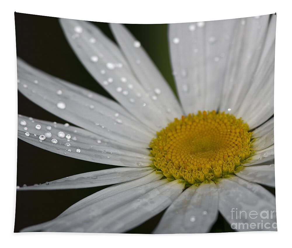 Macro Tapestry featuring the photograph Pristine... by Nina Stavlund