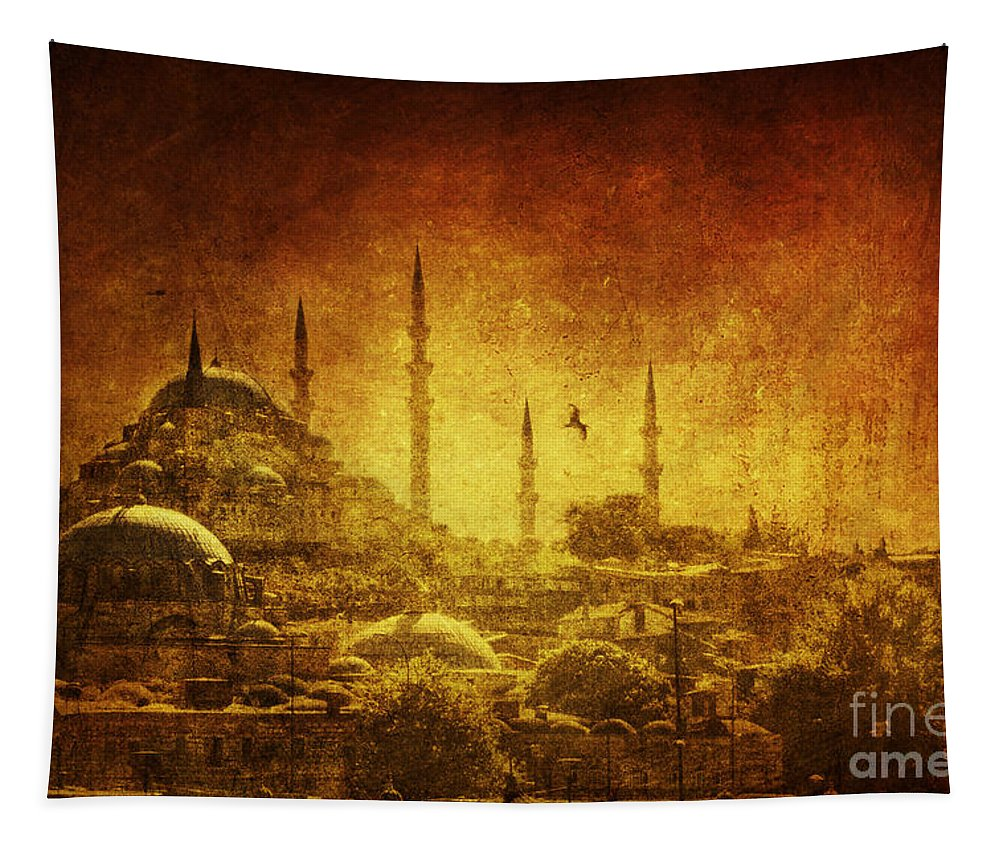 Turkey Tapestry featuring the photograph Prophetic Past by Andrew Paranavitana