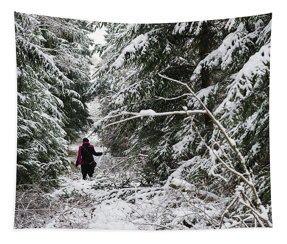 Forest Tapestry featuring the photograph Protective Forest In Winter With Snow Covered Conifer Trees by Matthias Hauser