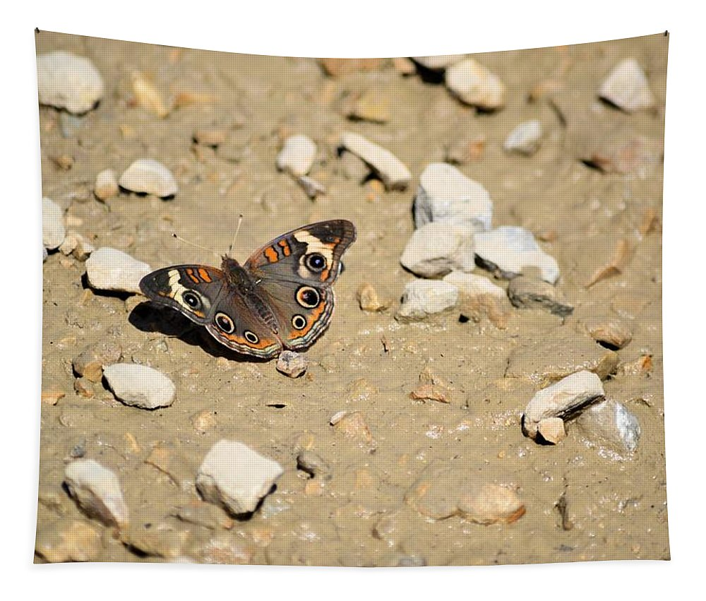 Puddling Tapestry featuring the photograph Puddling Beauty 8766 by Bonfire Photography