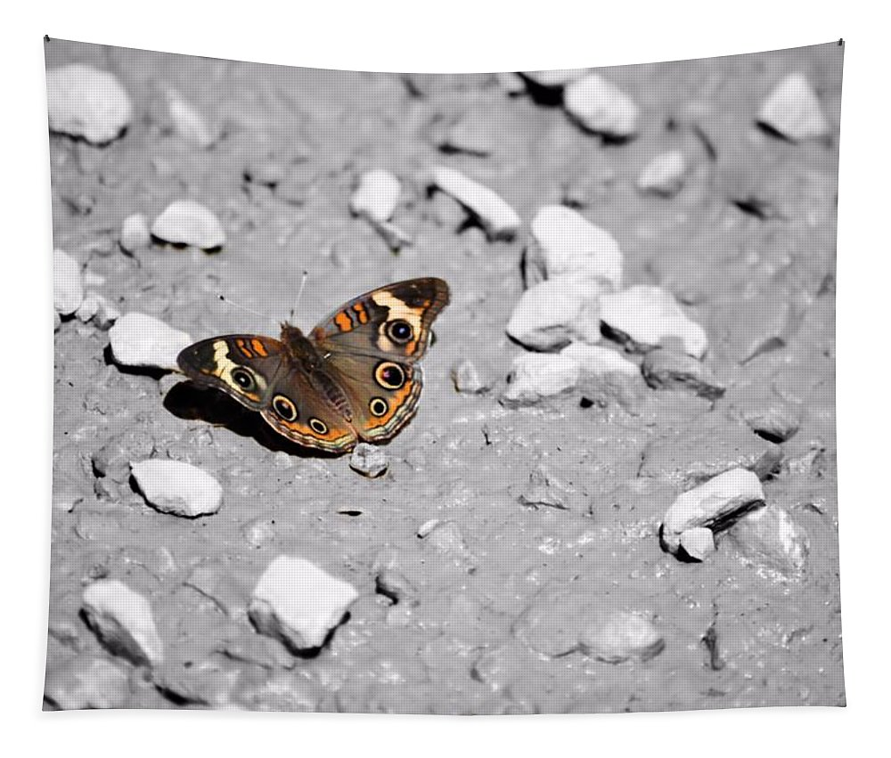 Puddling Tapestry featuring the photograph Puddling Butterfly 8766 by Bonfire Photography