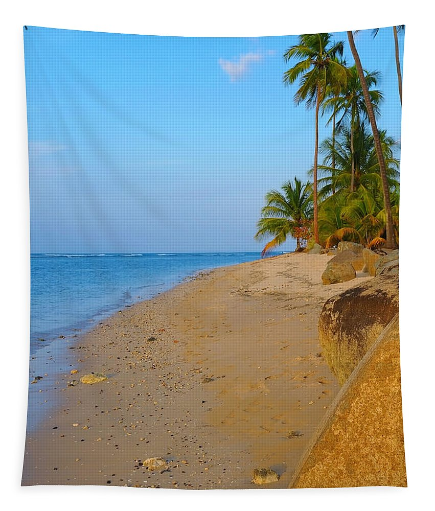 Caribbean Tapestry featuring the photograph Puerto Rico Beach by Stephen Anderson