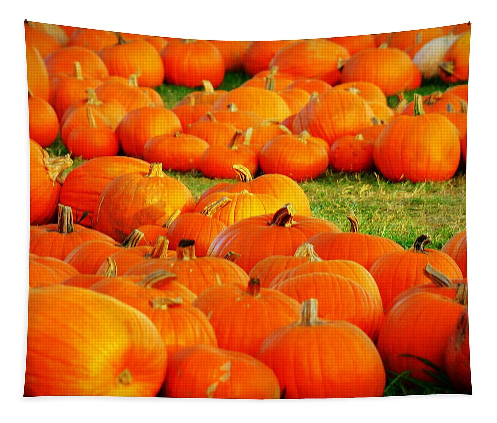 Pumpkins Tapestry featuring the photograph Pumpkin Patch by Paul Wilford