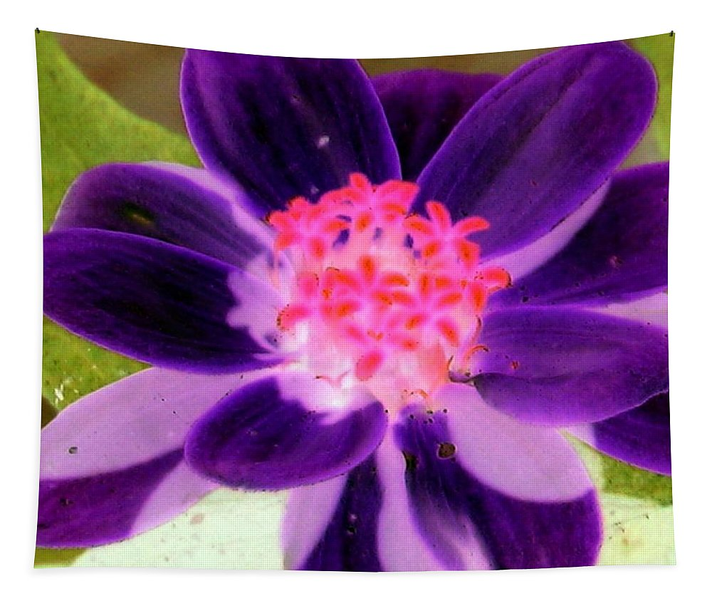 Flower Tapestry featuring the photograph Purple Flower - Photopower 257 by Pamela Critchlow