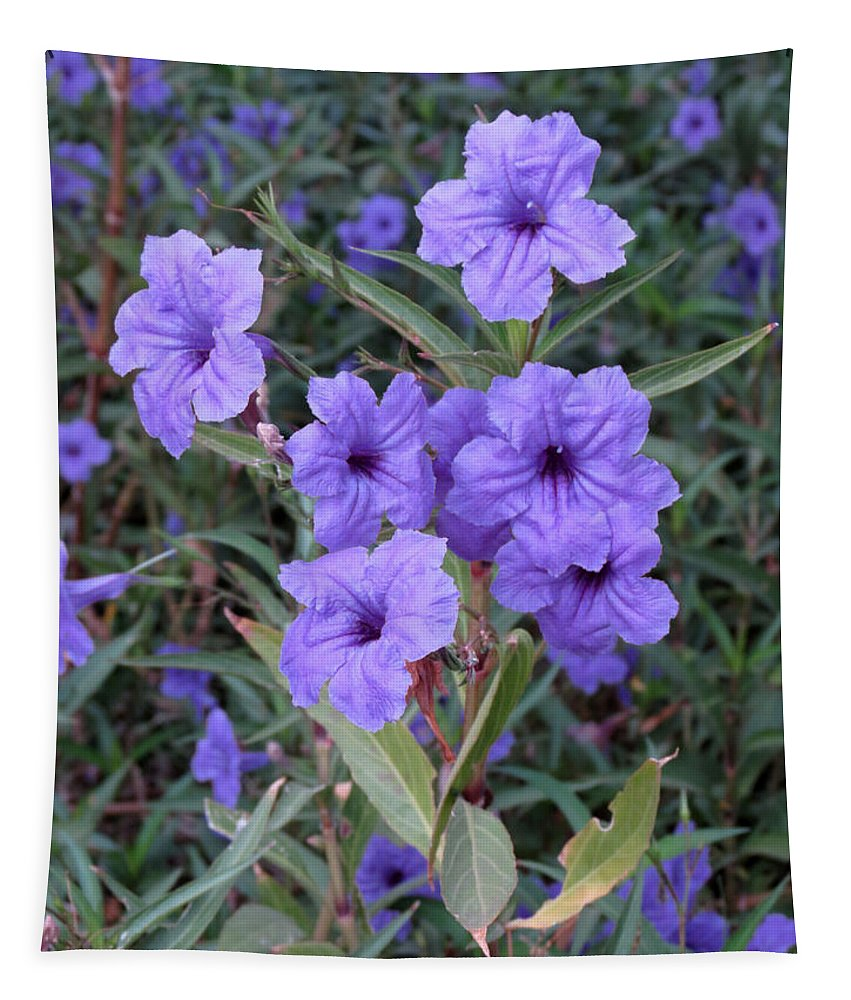 Flowers Tapestry featuring the photograph Purple Flowers by Laurel Powell