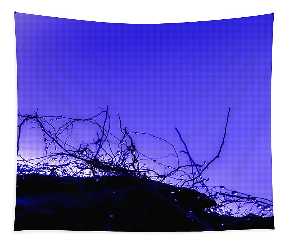 Purple Tapestry featuring the photograph Purple Haze by Alex Hiemstra