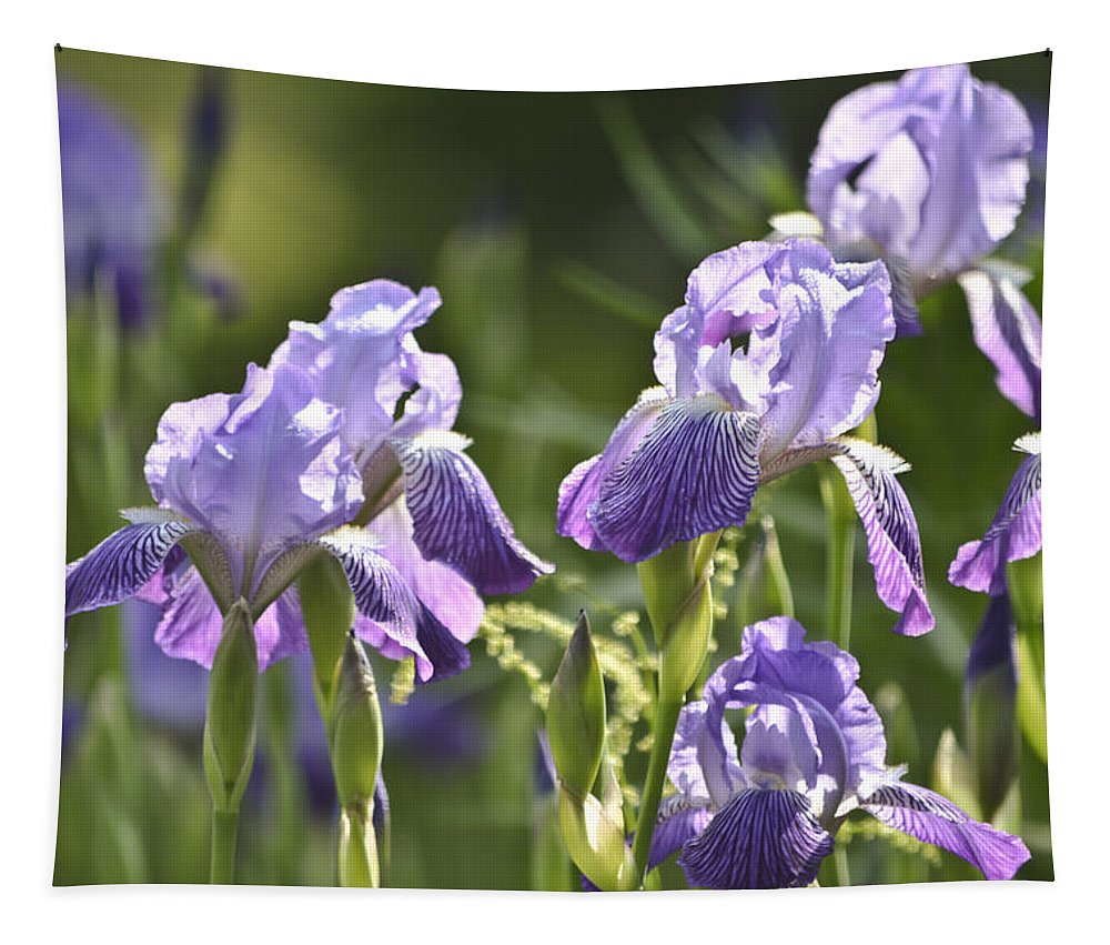 Flower Tapestry featuring the mixed media Purple Irises by Trish Tritz