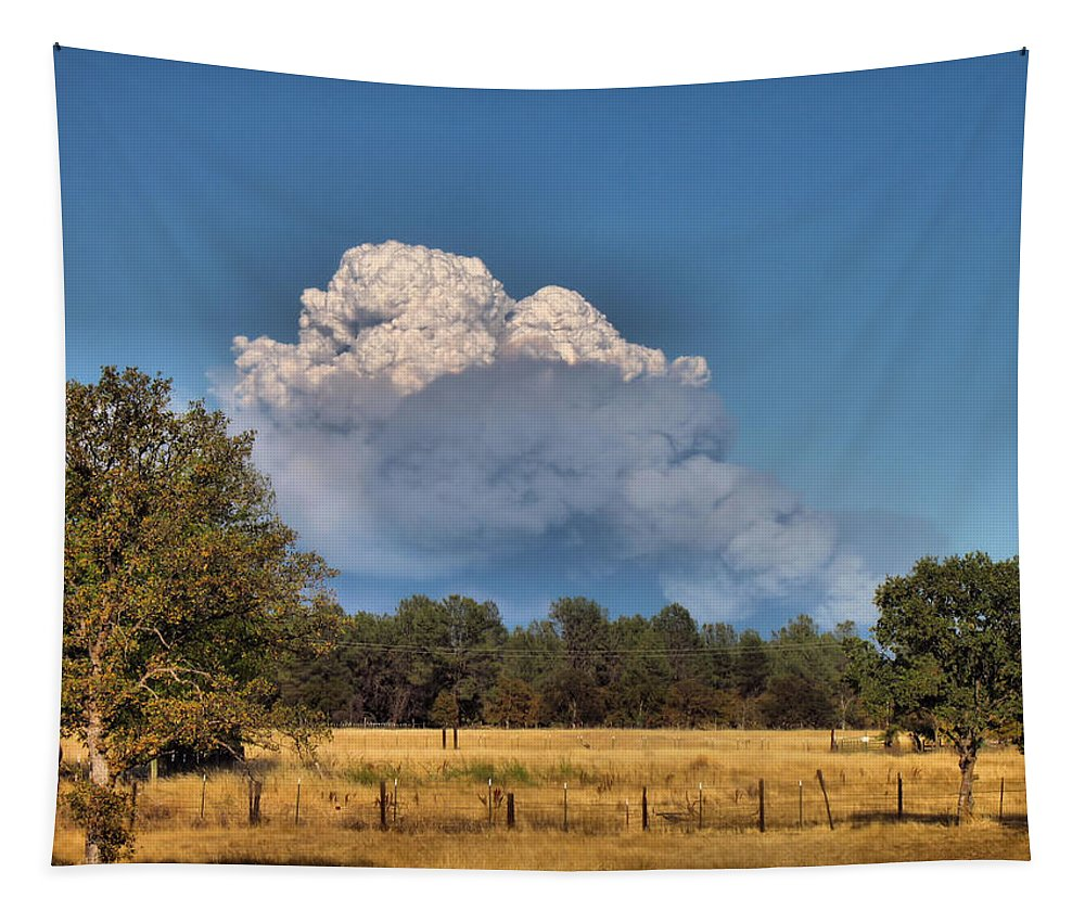 Cloud Tapestry featuring the photograph Pyrocumulus Cloud 08 18 12 by Joyce Dickens