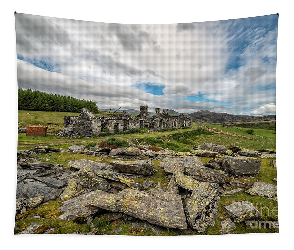 Rhos Tapestry featuring the photograph Quarry Cottages by Adrian Evans