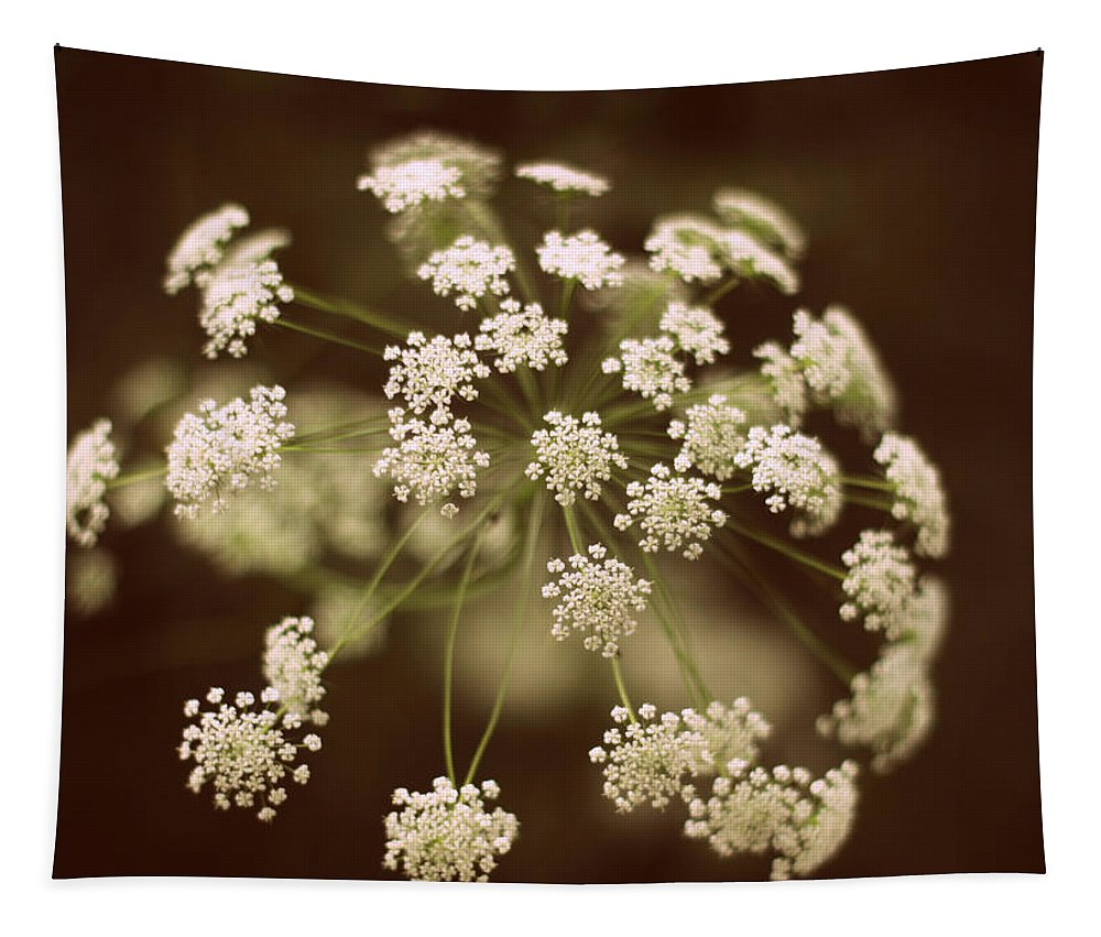 Flower Tapestry featuring the photograph Queen Anne's Lace by Jessica Jenney