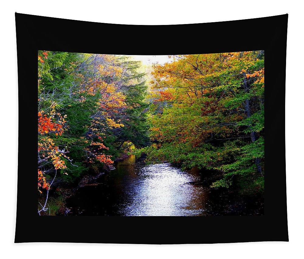 Quiet Please Tapestry featuring the photograph Quiet Please by Karen Cook