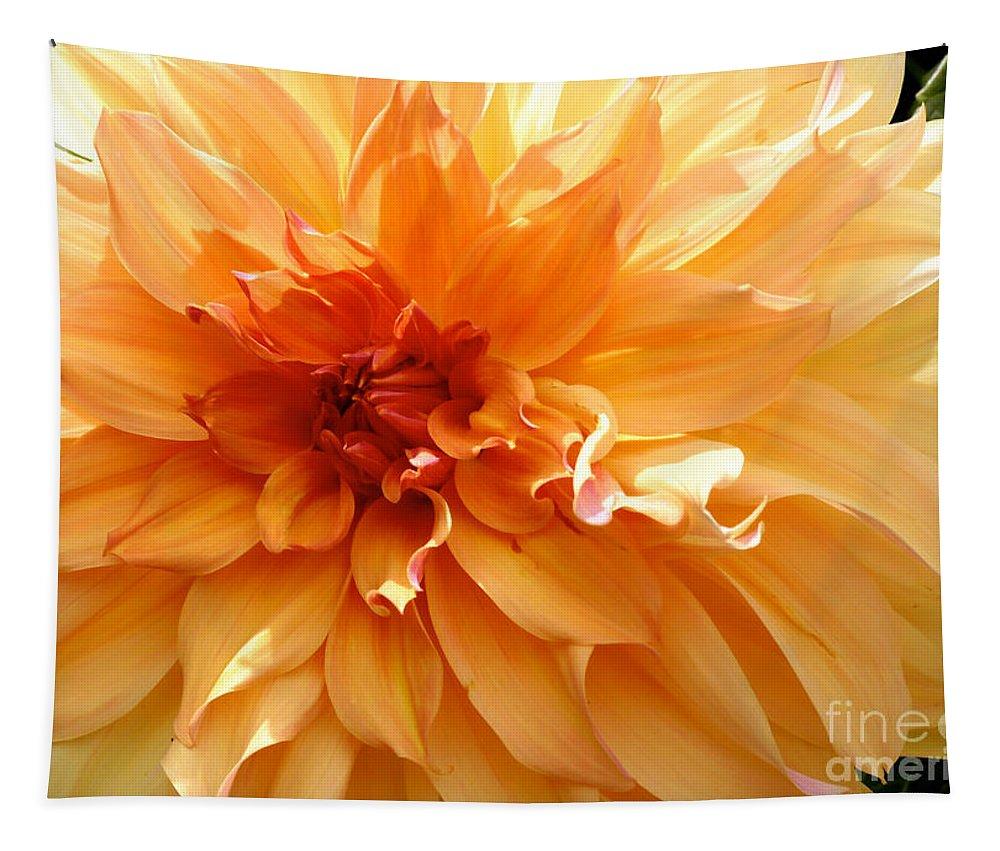 Dahlia Tapestry featuring the photograph Radiating Orange Dahlia by Carol Groenen