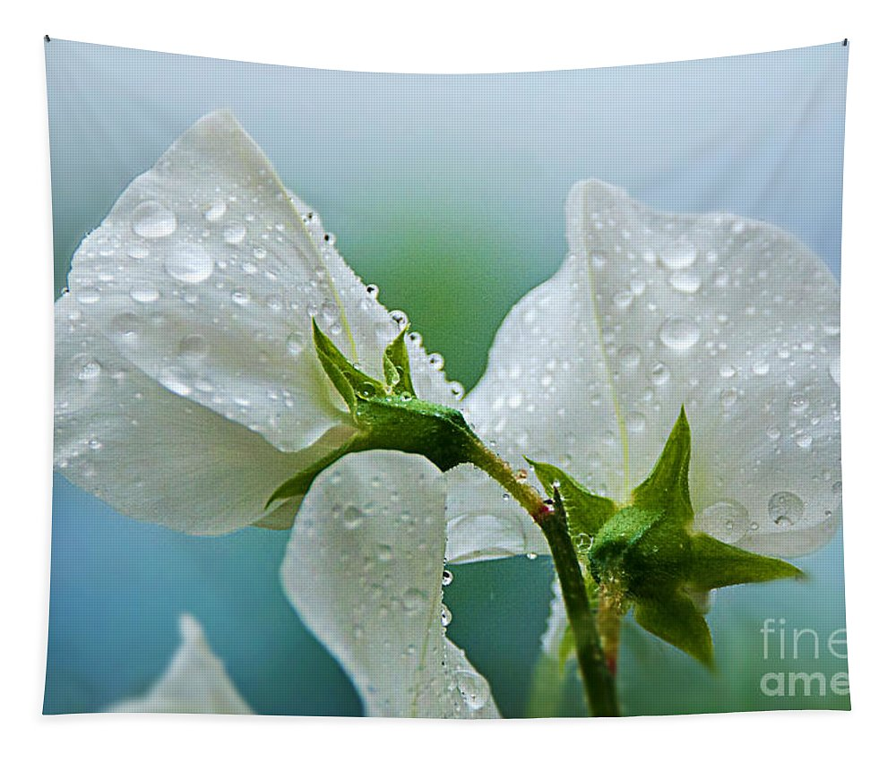 Sweet Peas Tapestry featuring the photograph Rain On Sweet Peas by Susie Peek