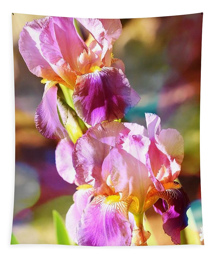 Iris Tapestry featuring the photograph Rainbow Irises by Carol Groenen