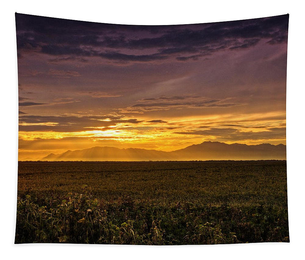 Sunset Tapestry featuring the photograph Rays Of Hope by Saija Lehtonen