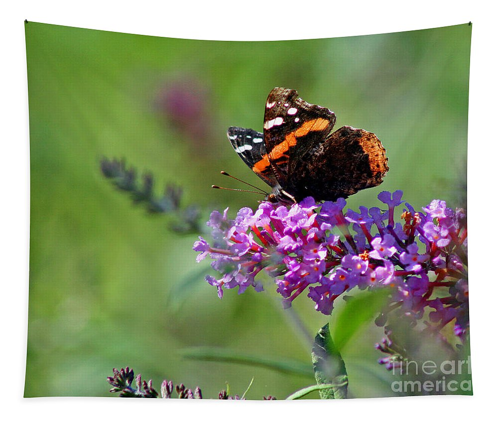 Red Tapestry featuring the photograph Red Admiral Butterfly On Butterfly Bush by Karen Adams