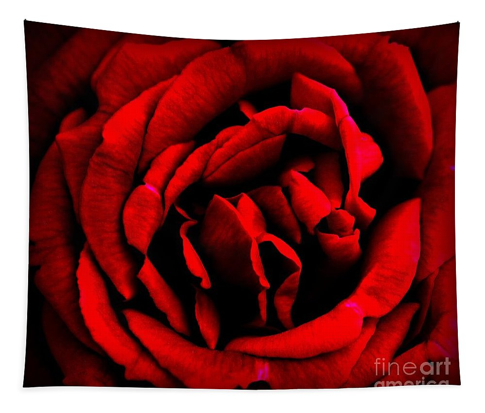 Rose Tapestry featuring the photograph Red And Black Layers by Clare Bevan