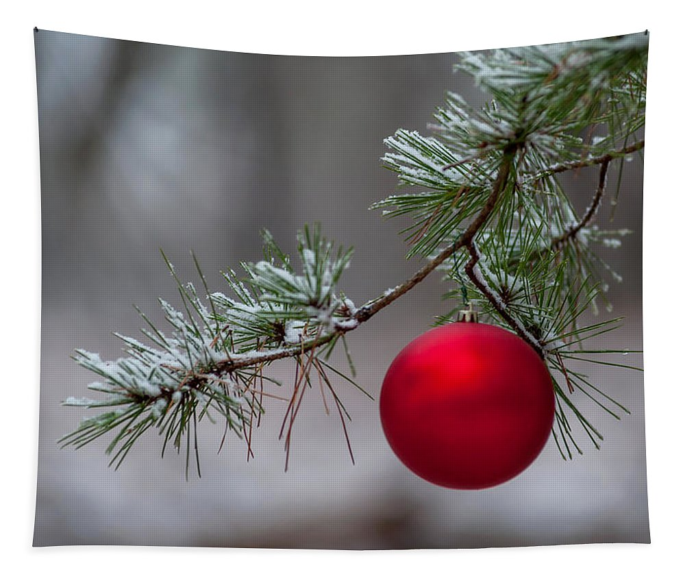 Terry D Photography Tapestry featuring the photograph Red Christmas Ball Branch by Terry DeLuco