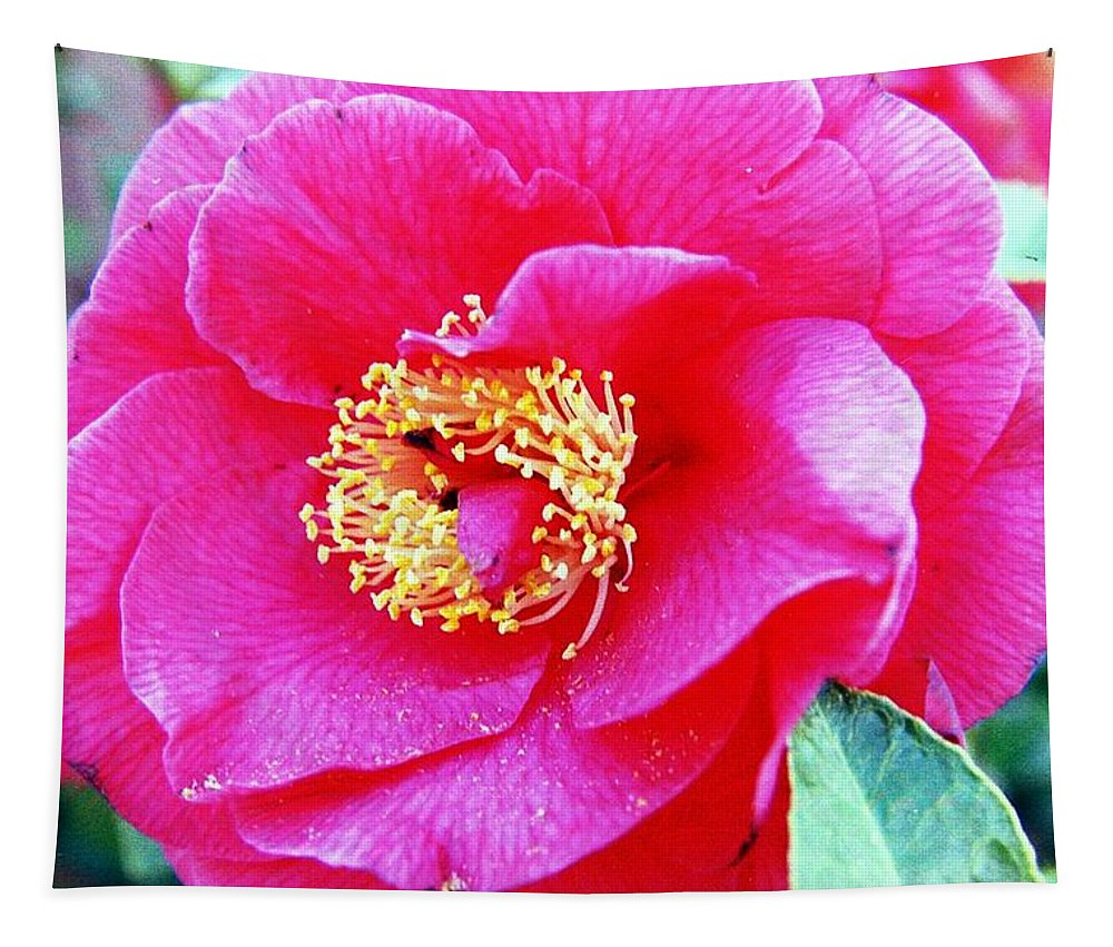Macro Tapestry featuring the photograph Red Flower by Karl Rose