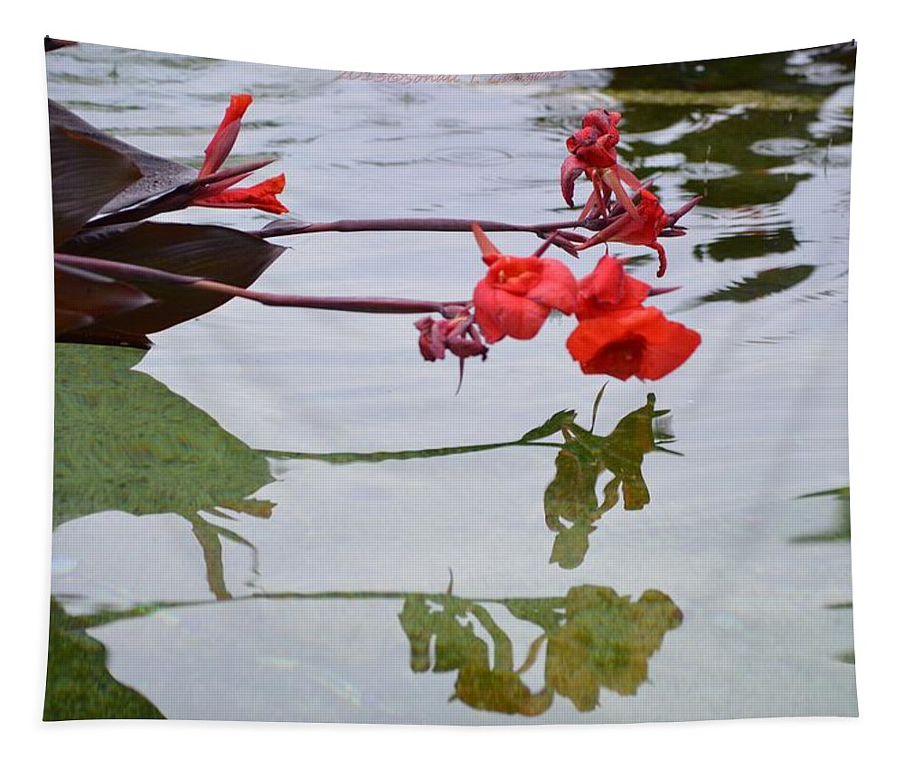 Red Reflection Tapestry featuring the photograph Red Reflection by Sonali Gangane