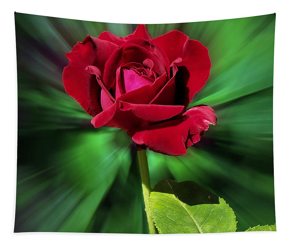 Red Rose Tapestry featuring the photograph Red Rose Green Background by Thomas Woolworth