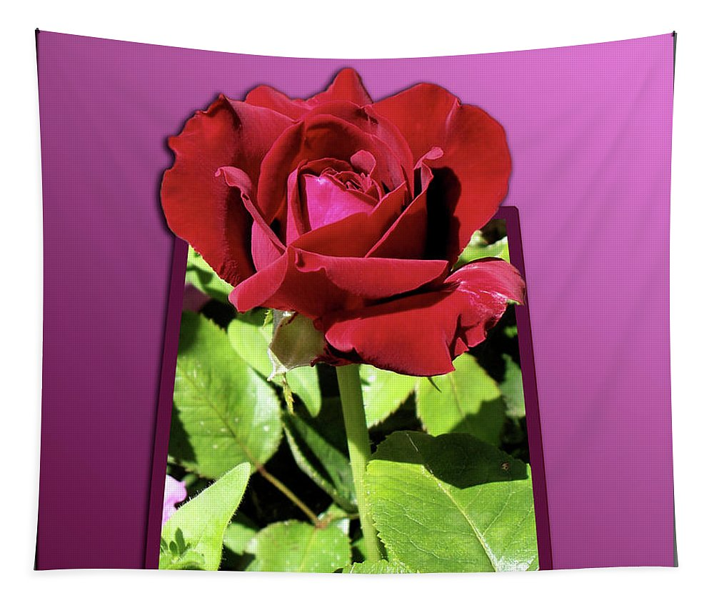 Red Rose Tapestry featuring the photograph Red Rose by Thomas Woolworth