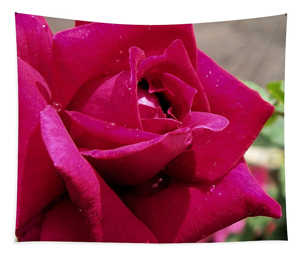 Red Tapestry featuring the photograph Red Rose Up Close by Thomas Woolworth