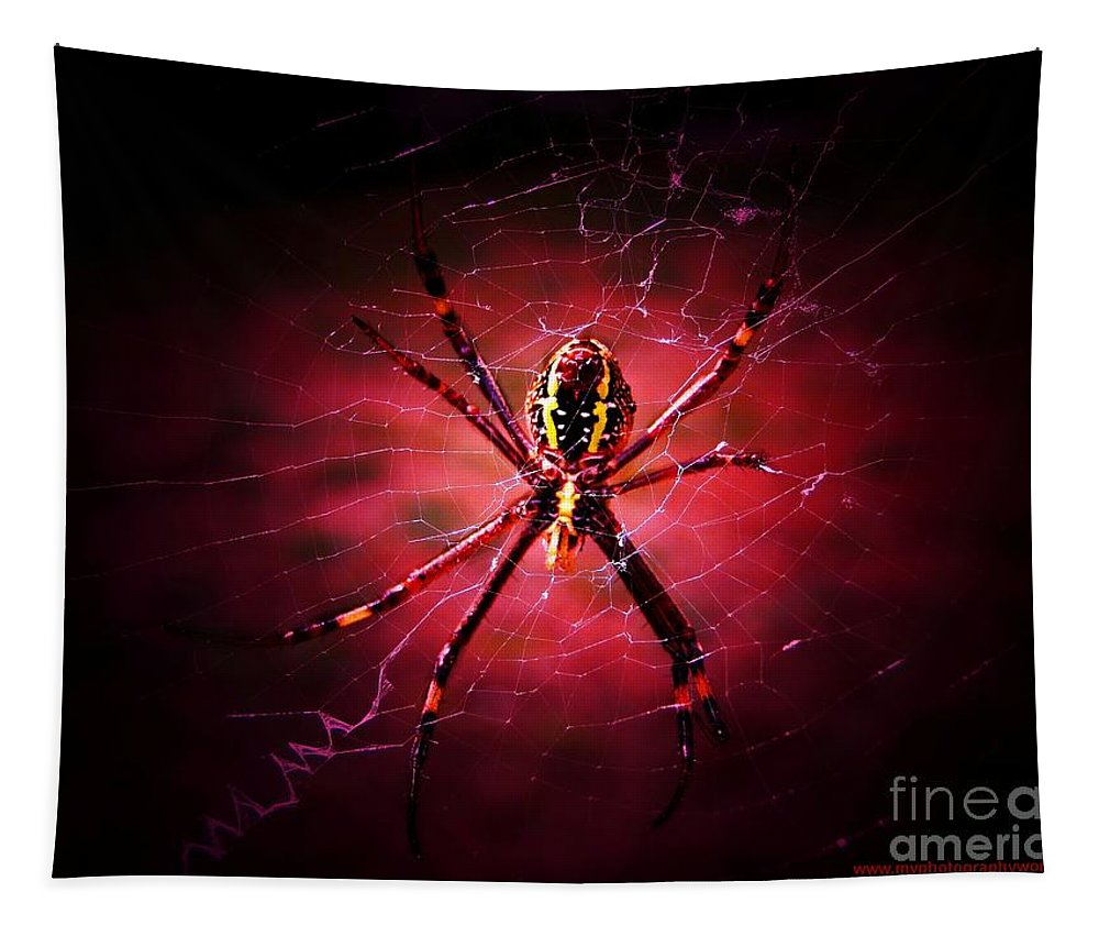 Spider Tapestry featuring the photograph Red Spider by Ben Yassa