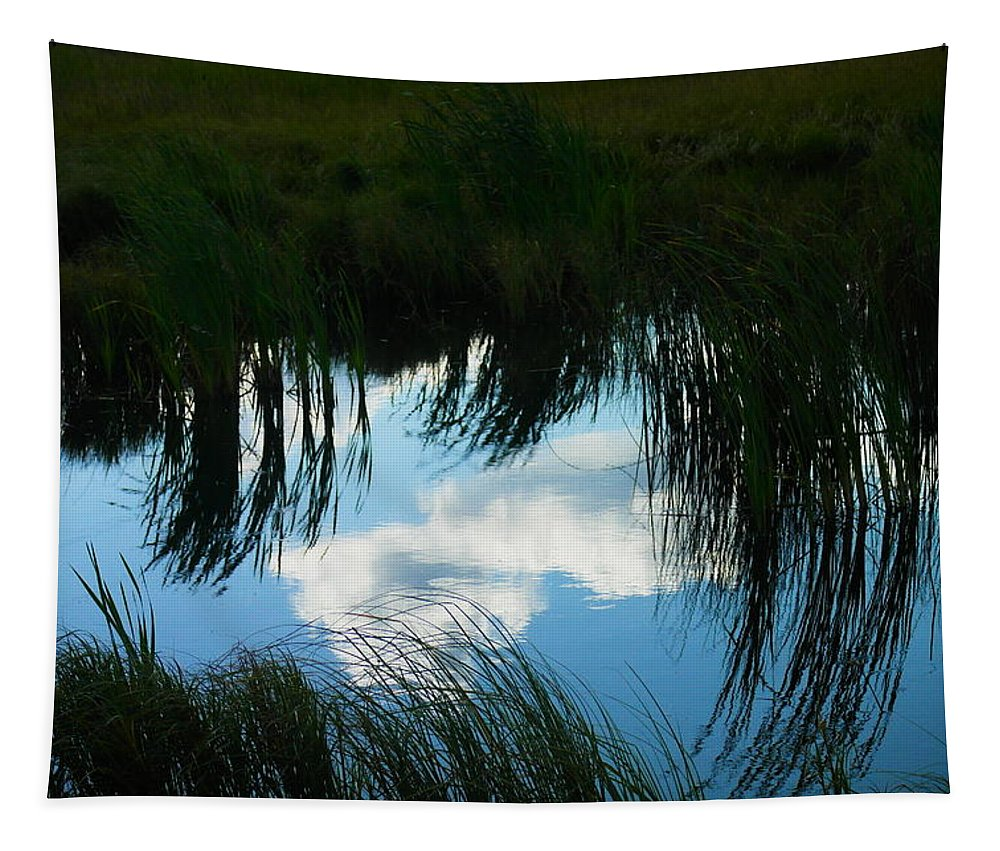 Reflections Tapestry featuring the photograph Reflecting The Grass by Jeff Swan