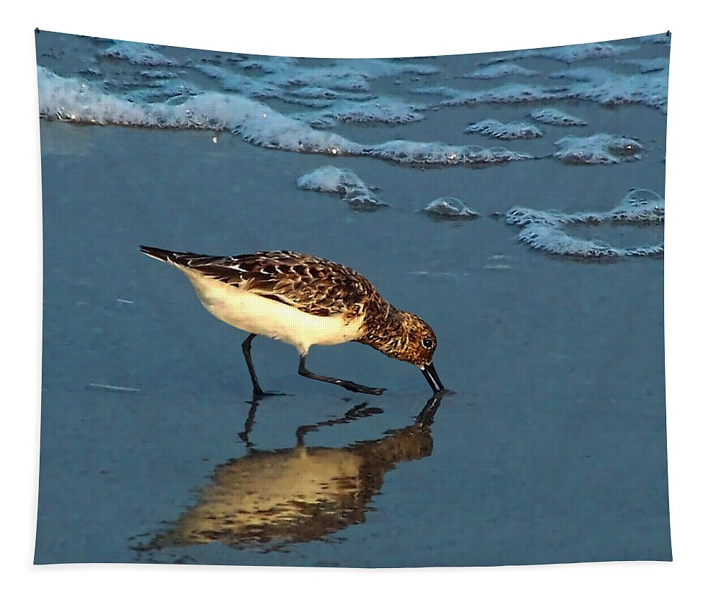 Sandpiper Tapestry featuring the photograph Reflection At Sunset by Sandi OReilly