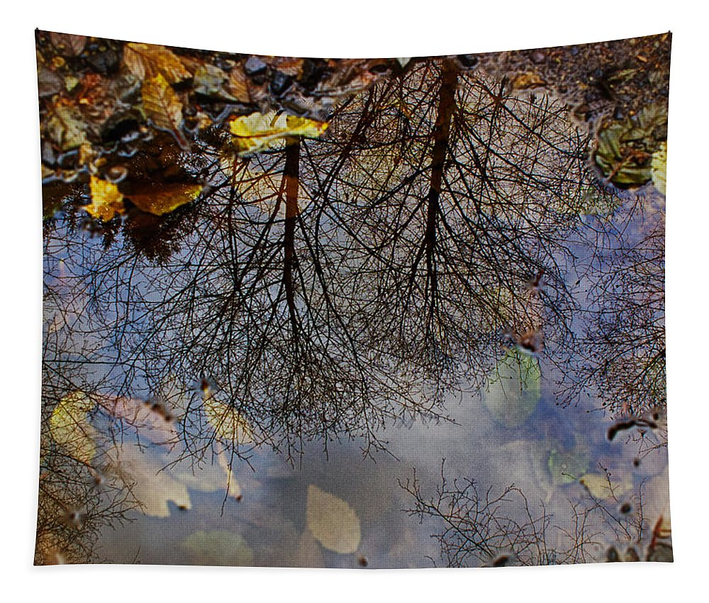 Puddle Tapestry featuring the photograph Reflection In A Puddle by Belinda Greb