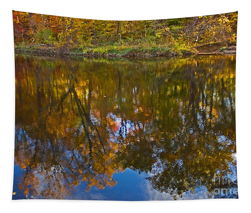 Autumn Tapestry featuring the photograph Reflection Of Fall by Tom Gari Gallery-Three-Photography