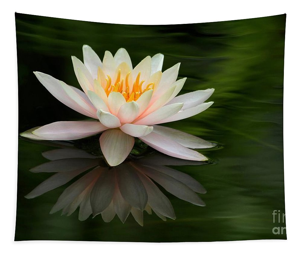 White Tapestry featuring the photograph Reflections Of A Water Lily by Sabrina L Ryan