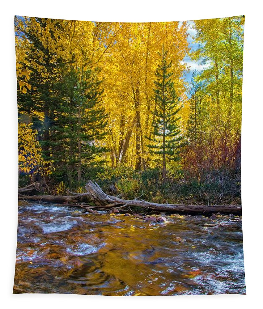 Fall Tapestry featuring the photograph Reflections Of Gold by Lynn Bauer