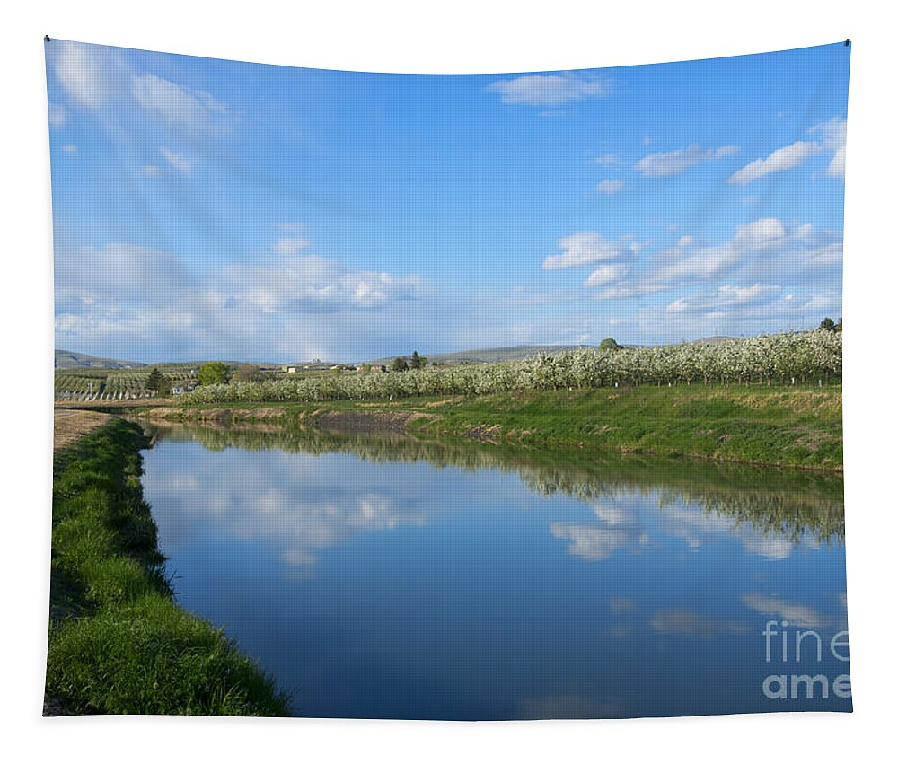 Canal Tapestry featuring the photograph Reflections Of Spring by Mike Dawson