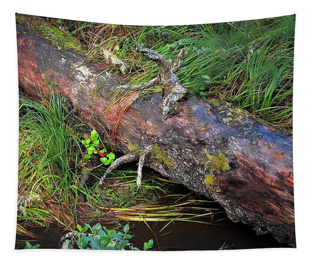 Nature Tapestry featuring the photograph Replenishing The Earth I by Joyce Dickens