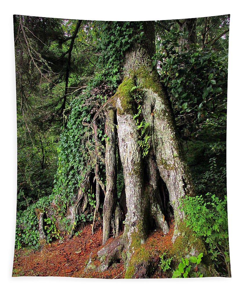 Nature Tapestry featuring the photograph Replenishing The Earth II by Joyce Dickens