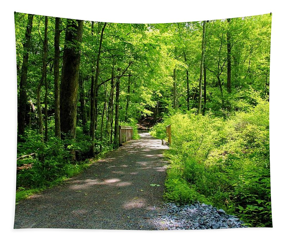 Forest Tapestry featuring the photograph Wooded Path 20 by Robert McCulloch