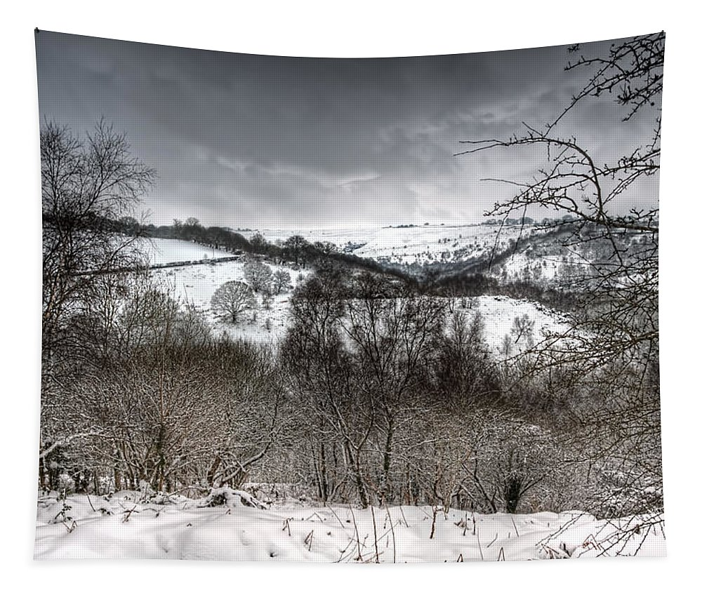 Winter Tapestry featuring the photograph Rhymney Valley Winter 5 by Steve Purnell