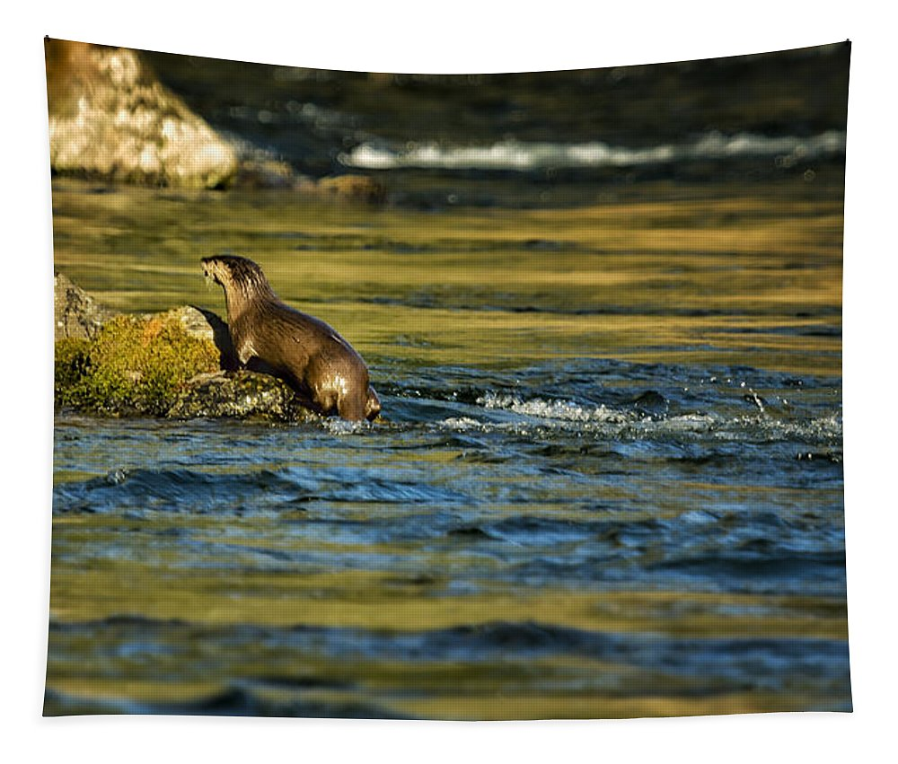 River Otter Tapestry featuring the photograph River Otter On A Rock by Belinda Greb
