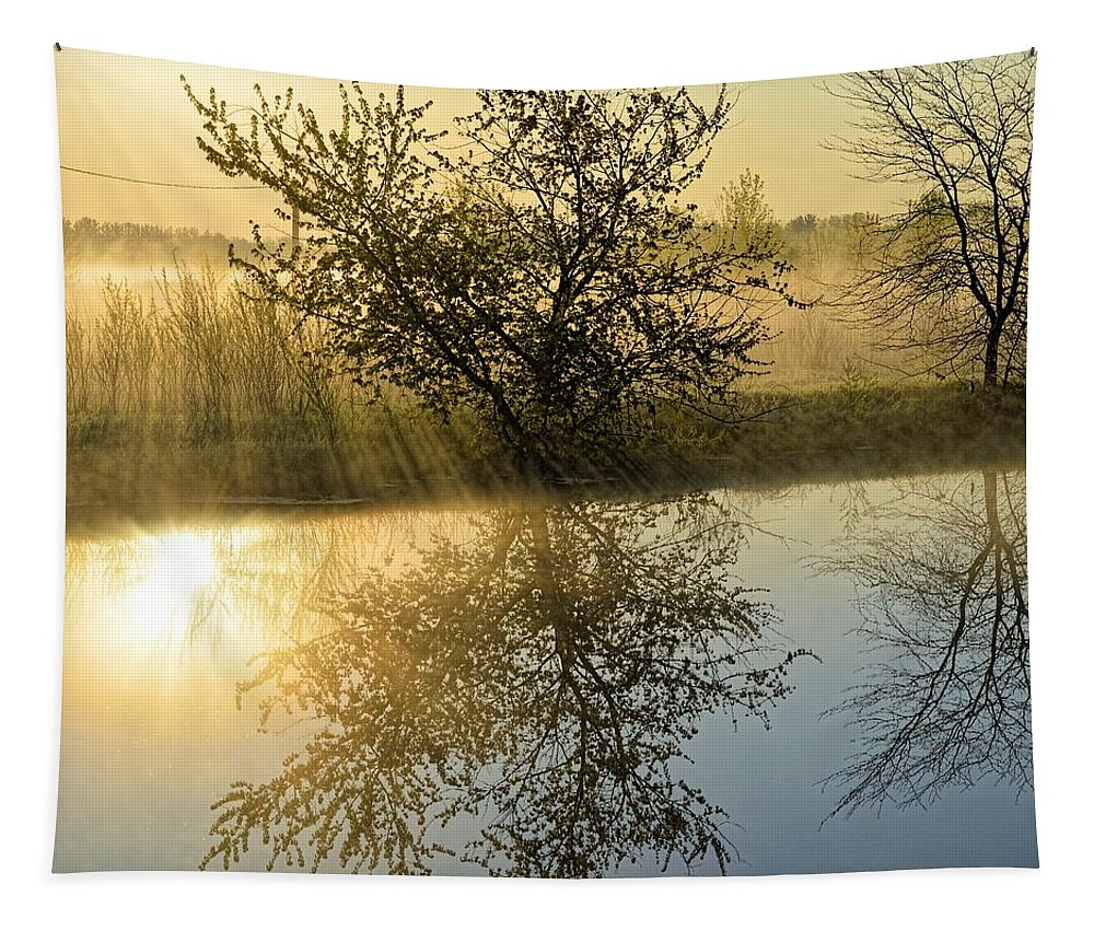 River Tapestry featuring the photograph River Rays by Bonfire Photography