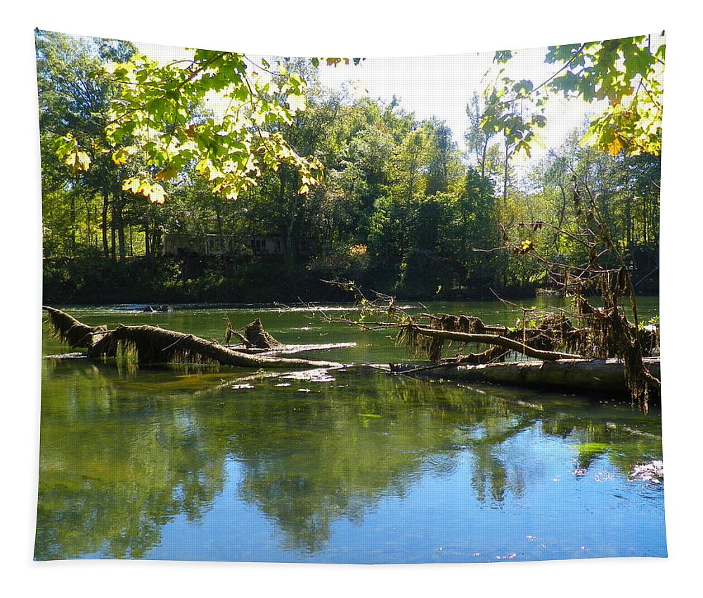 Rivers Edge Tapestry featuring the photograph Rivers Edge by Lisa Wooten