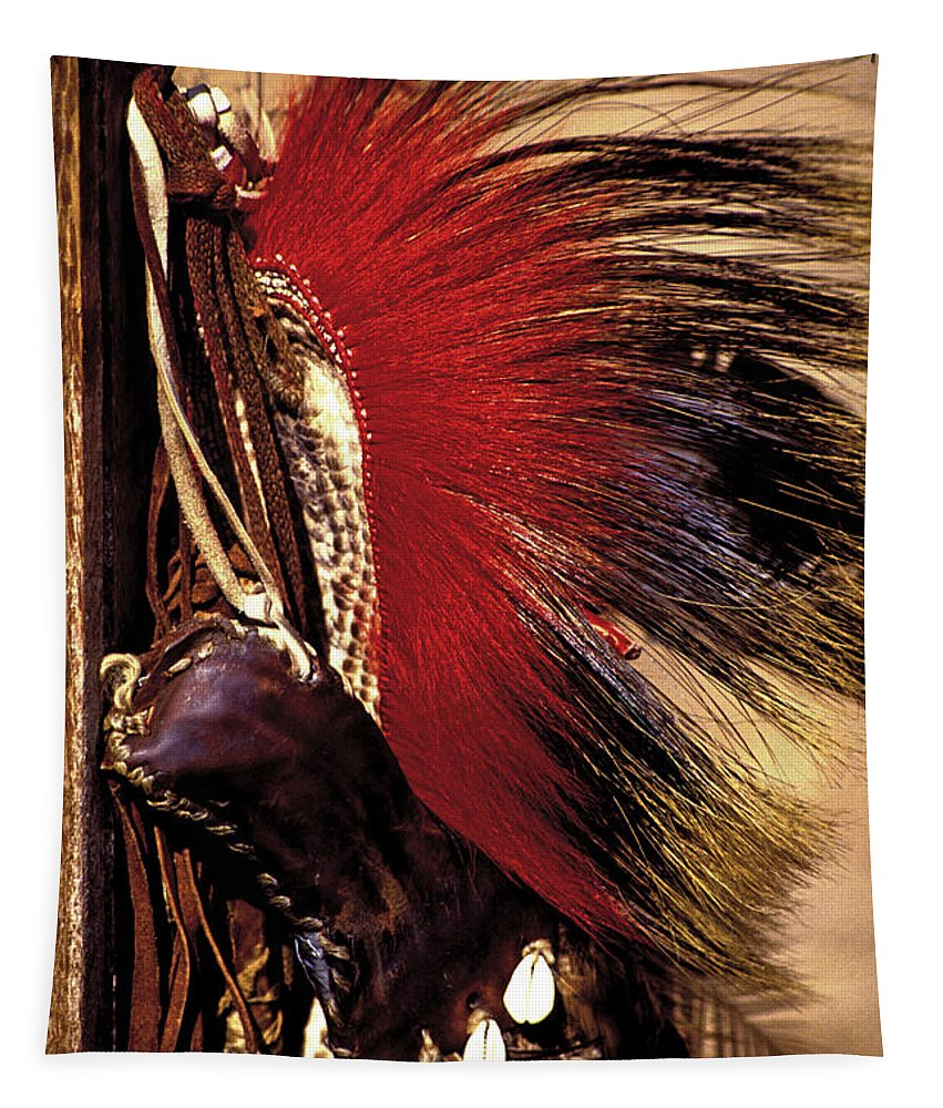 Pow Wow Tapestry featuring the photograph Roach by Paul W Faust - Impressions of Light