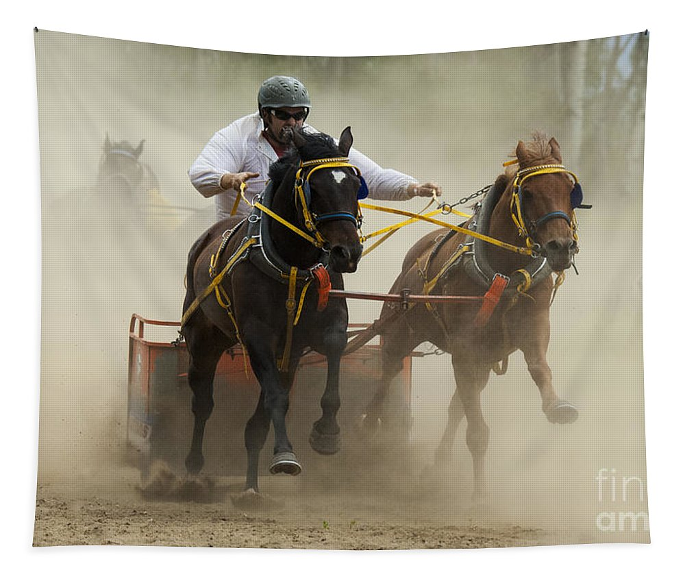 Rodeo Tapestry featuring the photograph Rodeo Eat My Dust 1 by Bob Christopher