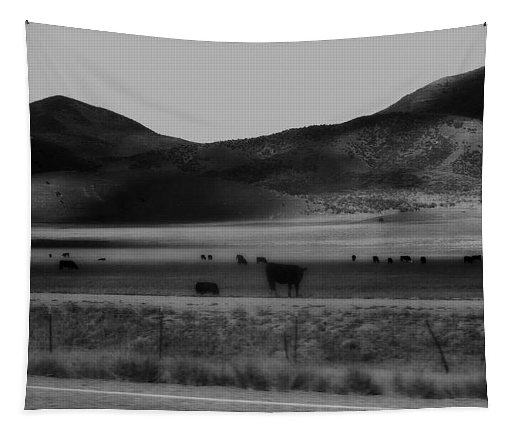 Rolling Hills And Cattle In Black And White Tapestry featuring the photograph Rolling Hills And Cattle In Black And White by Dan Sproul